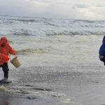 Минобороны отрицает причастность флота к загрязнению у берегов Камчатки
