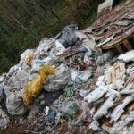Фотоловушки помогут выявлять незаконный сброс мусора в Подмосковье