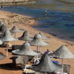 Посольство Египта подтвердило скорое возобновление чартеров на курорты